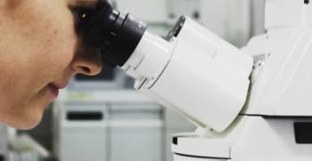 Kaip maistas veikia žmogaus organizmą ir imuninė sistema